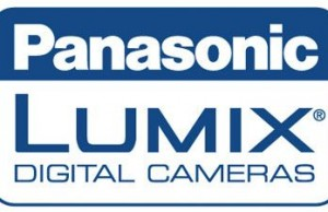 Panasonic Lumix S 70–300mm f/4.5–5.6 Macro OIS
