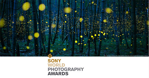 sony-worldphotoorg-thumb