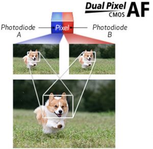 Canon's-Dual-Pixel-CMOS-AF