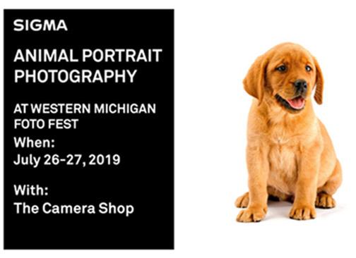 Sigma-Animal-Portraits-Michigan-banner