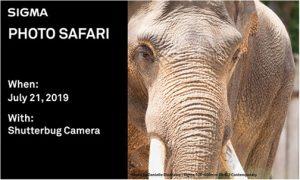 Sigma-Photo-Safari-Shutterbug