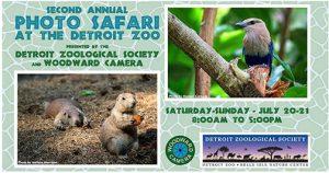 Sigma-Dealer Workshops-Woodward-Zoo