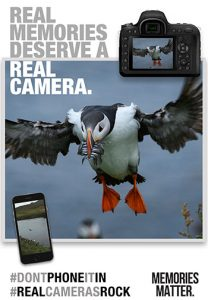 Memories matter Imaging-Alliance-RealCamerasRock-MM-penguin