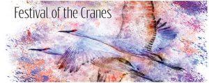 Festival-Cranes Sigma fp launch