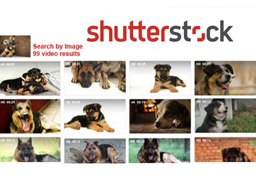 Shutterstock-ReverseSearch-Video