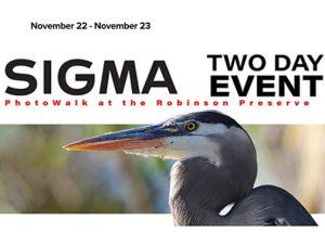 Sigma fp launch Sigma-Festival-Cranes-11-19-Banner