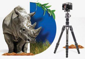 Benro-Rhino-tripod-graphic