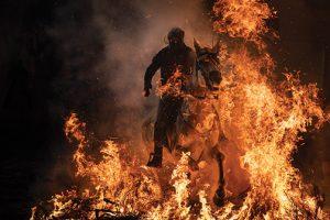 Sony-Associated Press-Horse-AP-Felipe-Dana