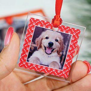 MyPhoto.com-1 holiday photo gift buying