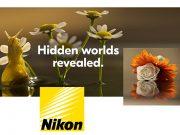 Nikon-Macro-Lenses-6-21