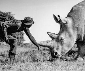 Africa in Focus contest Olympus-Wilderness-Safari-3
